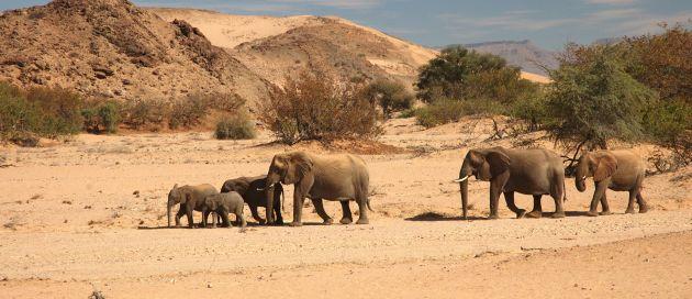 Namibie, circuit Tour du Monde des Sites Naturels