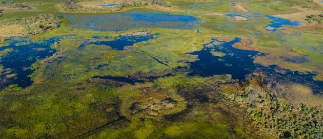 Croisière arienne Delta de l'Okavango